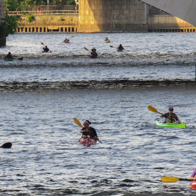 kayakers on the tidal Schuylkill